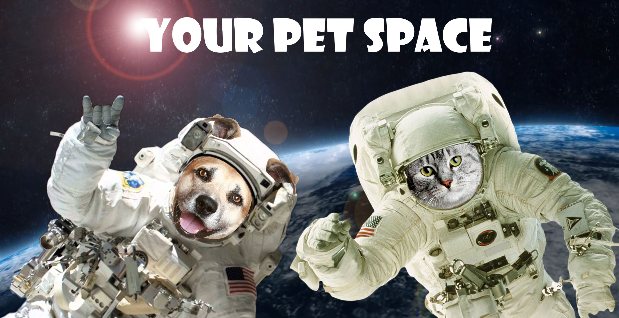 New Requirements For Your Pet Space